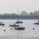 Boats, Carsington Water