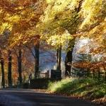 Peak District Cycling - Autumn